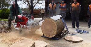 alh-australian-v8-chainsaw-cuts-hardwood-like-beast